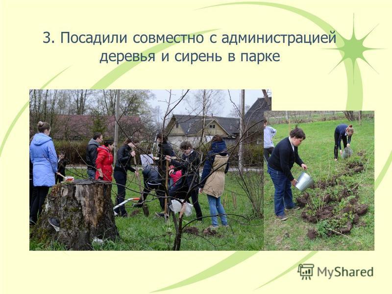 3. Посадили совместно с администрацией деревья и сирень в парке