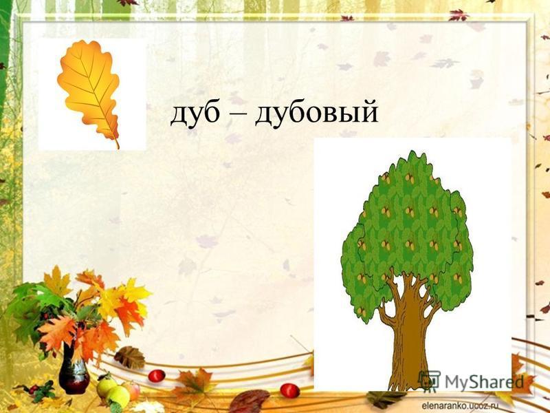 дуб – дубовый