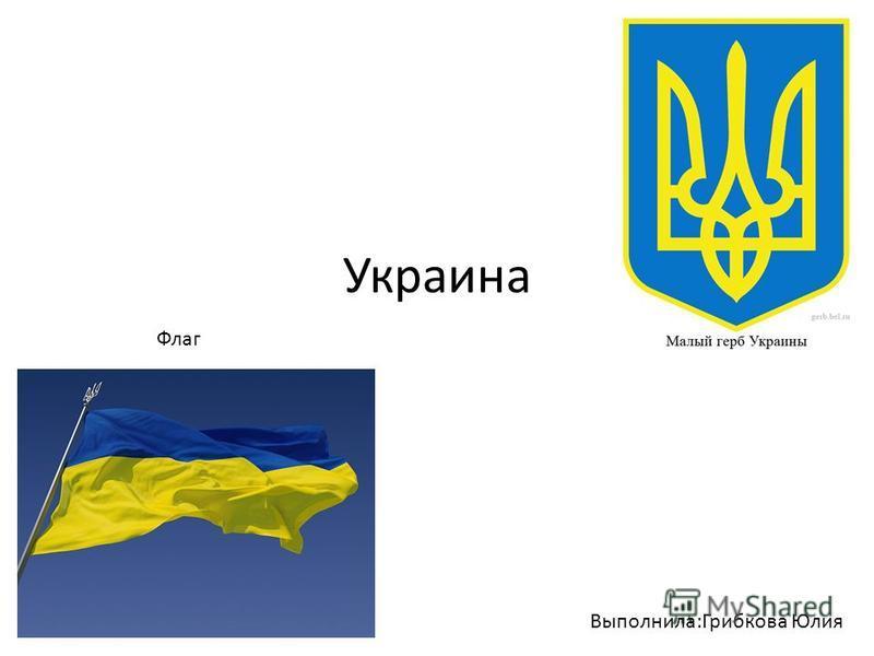 Украина Флаг Выполнила:Грибкова Юлия