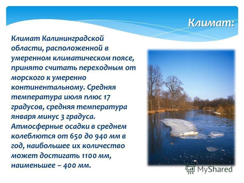 Климат Калининградской области, расположенной в умеренном климатическом поясе, принято считать переходным от морского к умеренно континентальному. Средняя температура июля плюс 17 градусов, средняя температура января минус 3 градуса. Атмосферные осад