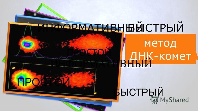 метод ДНК-комет БЫСТРЫЙ ПРОСТОЙ ИНФОРМАТИВНЫЙ БЫСТРЫЙ ИНФОРМАТИВНЫЙ ПРОСТОЙ