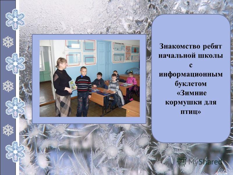 Знакомство ребят начальной школы с информационным буклетом «Зимние кормушки для птиц»