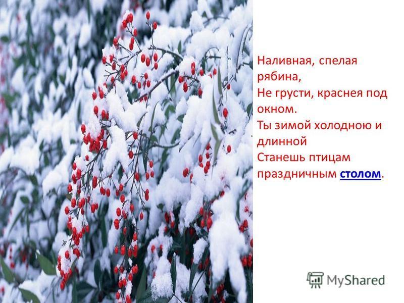 Наливная, спелая рябина, Не грусти, краснея под окном. Ты зимой холодною и длинной Станешь птицам праздничным столом.столом