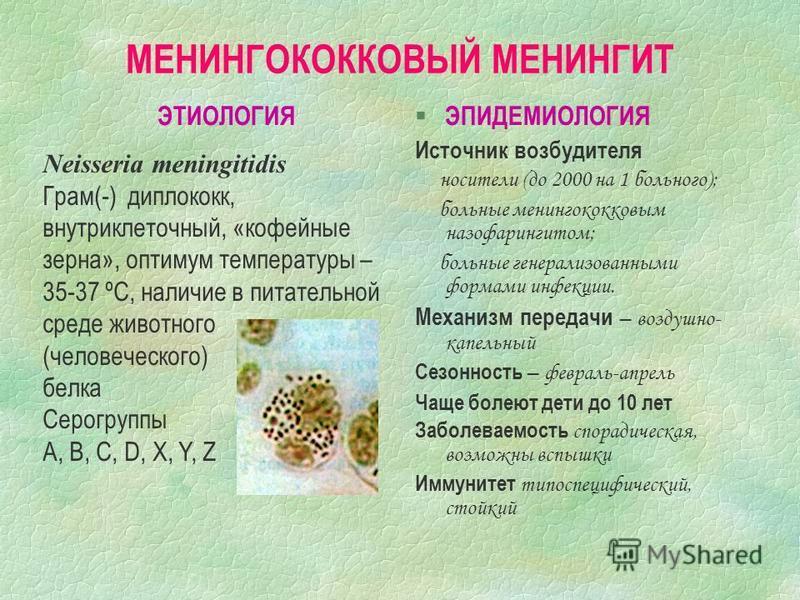 МЕНИНГОКОККОВЫЙ МЕНИНГИТ ЭТИОЛОГИЯ § ЭПИДЕМИОЛОГИЯ Источник возбудителя носители (до 2000 на 1 больного); больные менингококковым назофарингитом; больные генерализованными формами инфекции. Механизм передачи – воздушно- капельный Сезонность – февраль