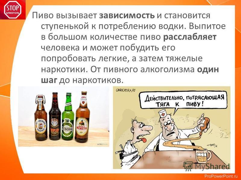 Пиво вызывает зависимость и становится ступенькой к потреблению водки. Выпитое в большом количестве пиво расслабляет человека и может побудить его попробовать легкие, а затем тяжелые наркотики. От пивного алкоголизма один шаг до наркотиков.