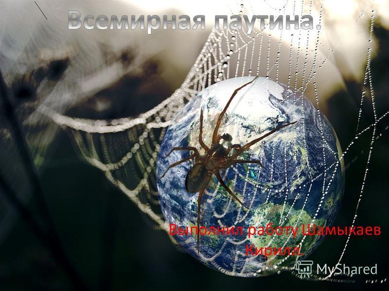 Выполнил работу Шамыкаев Кирилл.