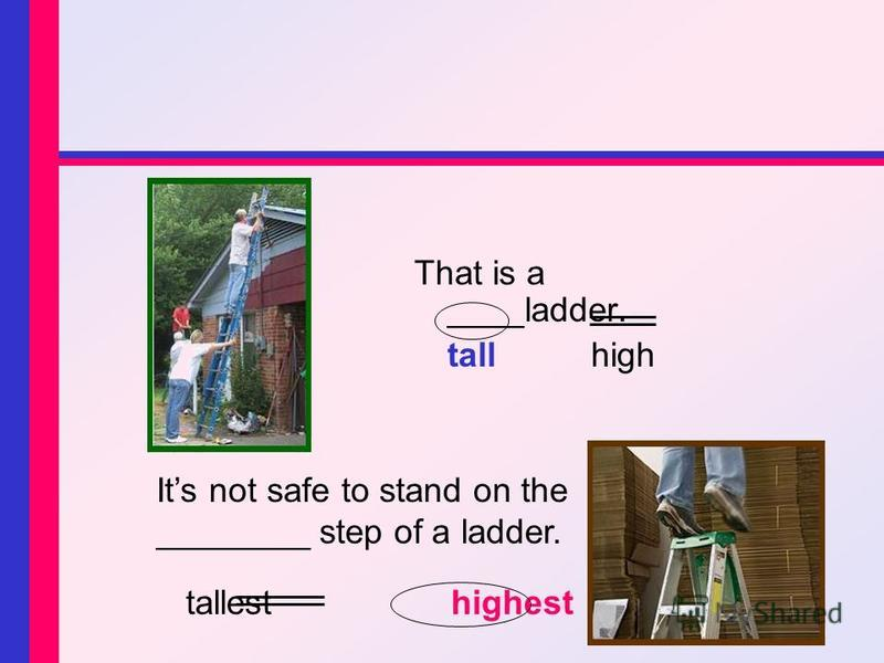 That is a ____ladder. tall high Its not safe to stand on the ________ step of a ladder. tallesthighest