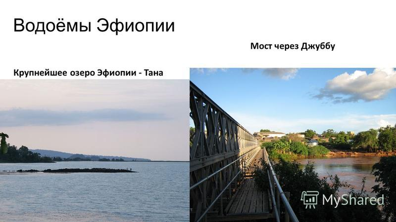 Водоёмы Эфиопии Крупнейшее озеро Эфиопии - Тана Мост через Джуббу