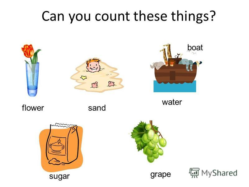 Can you count these things? flower sand boat water sugar grape