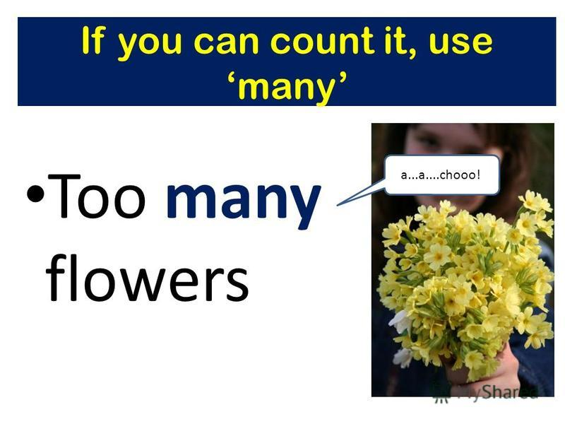 If you can count it, use many Too many flowers a...a....chooo!