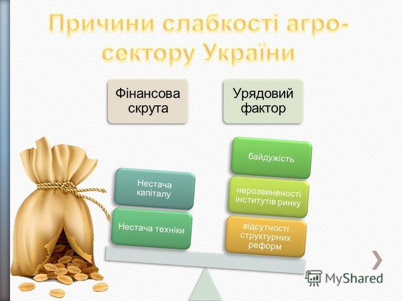 Фінансова скрута Урядовий фактор відсутності структурних реформ нерозвиненості інститутів ринку байдужістьНестача техніки Нестача капіталу