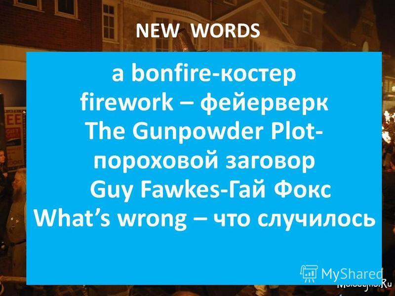 NEW WORDS a bonfire-костер firework – фейерверк The Gunpowder Plot- пороховой заговор Guy Fawkes-Гай Фокс Whats wrong – что случилось