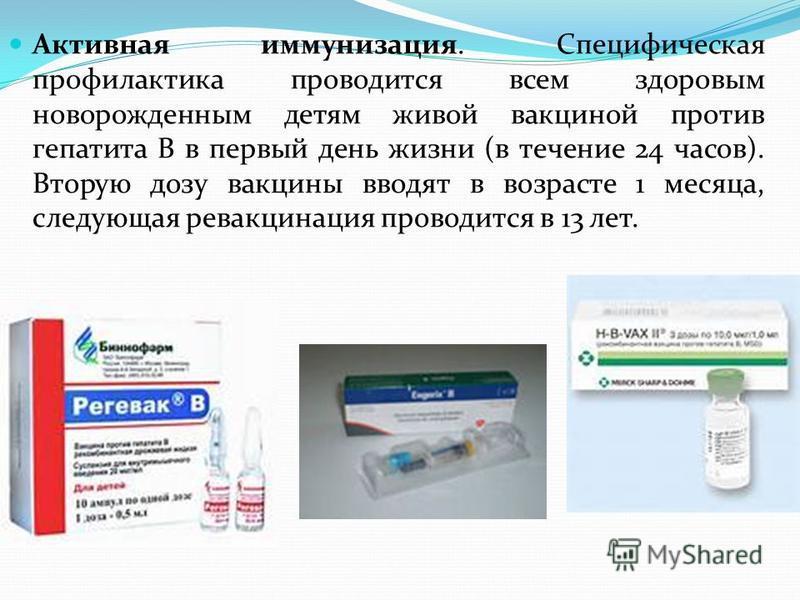Активная иммунизация. Специфическая профилактика проводится всем здоровым новорожденным детям живой вакциной против гепатита В в первый день жизни (в течение 24 часов). Вторую дозу вакцины вводят в возрасте 1 месяца, следующая ревакцинация проводится