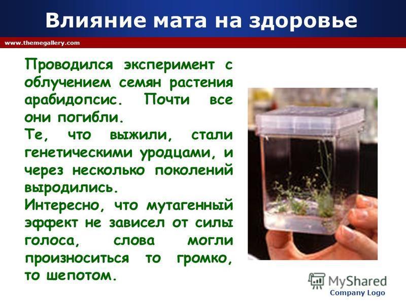 Company Logo www.themegallery.com Проводился эксперимент с облучением семян растения арабидопсис. Почти все они погибли. Те, что выжили, стали генетическими уродцами, и через несколько поколений выродились. Интересно, что мутагенный эффект не зависел