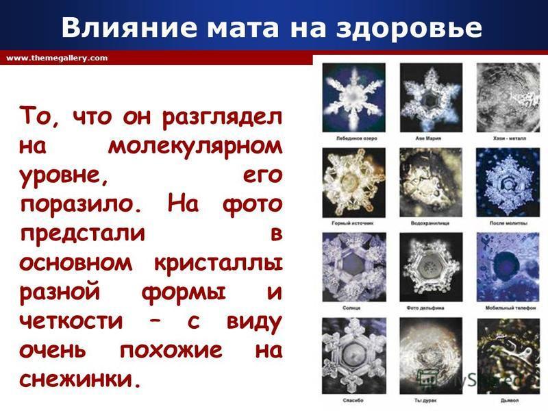 Company Logo www.themegallery.com Влияние мата на здоровье То, что он разглядел на молекулярном уровне, его поразило. На фото предстали в основном кристаллы разной формы и четкости – с виду очень похожие на снежинки.