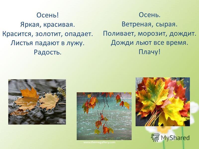 www.themegallery.com Осень! Яркая, красивая. Красится, золотит, опадает. Листья падают в лужу. Радость. Осень. Ветреная, сырая. Поливает, морозит, дождит. Дожди льют все время. Плачу!