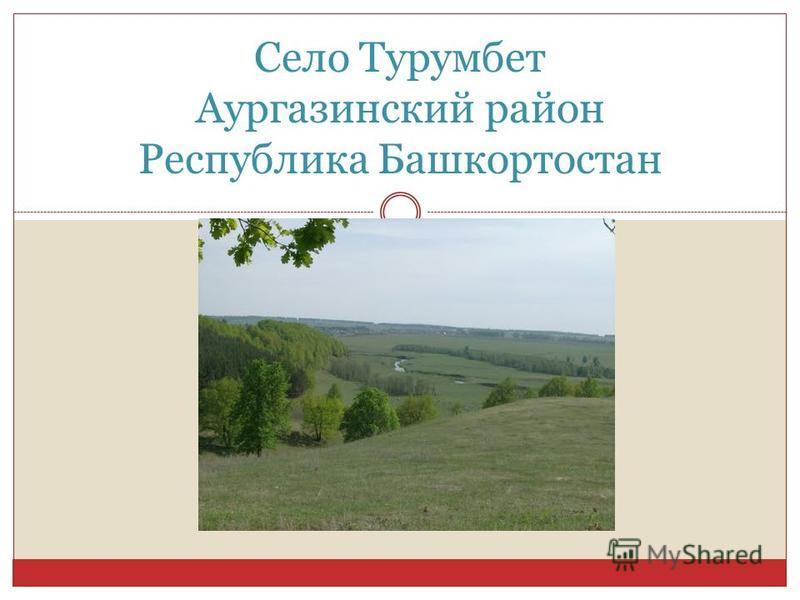 Село Турумбет Аургазинский район Республика Башкортостан