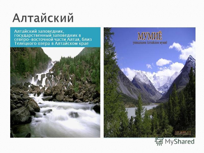 Алтайский заповедник, государственный заповедник в северо-восточной части Алтая, близ Телецкого озера в Алтайском крае