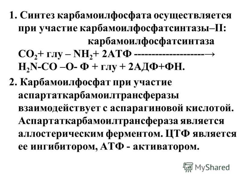 1. Синтез карбамилфосфата осуществляется при участие карбамилфосфатсинтазы–II: карбамилфосфатсинтаза CO 2 + гру – NH 2 + 2AТФ -------------------- Н 2 N-СО –О- Ф + гру + 2АДФ+ФН. 2. Карбамоилфосфат при участие аспартаткарбамоилтрансферазы взаимодейст