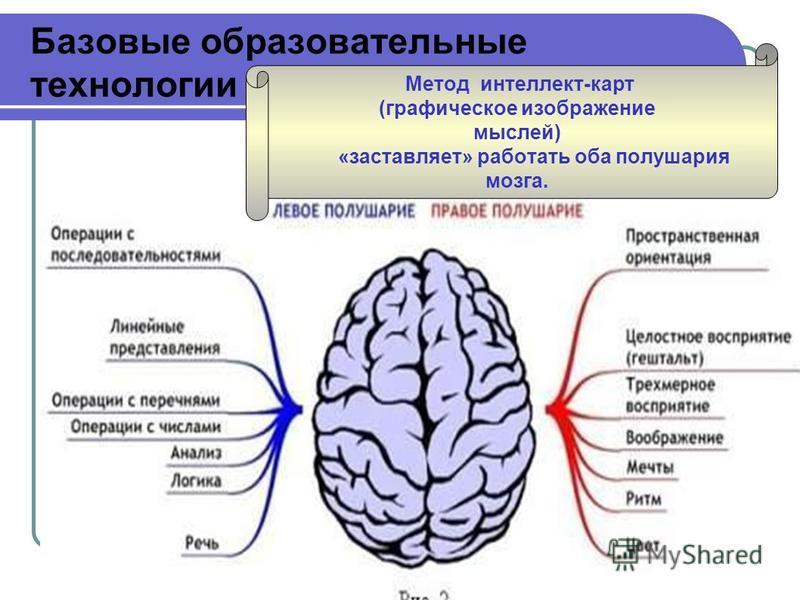 Базовые образовательные технологии Метод интеллект-карт (графическое изображание мыслей) «заставляет» работать оба полушария мозга.