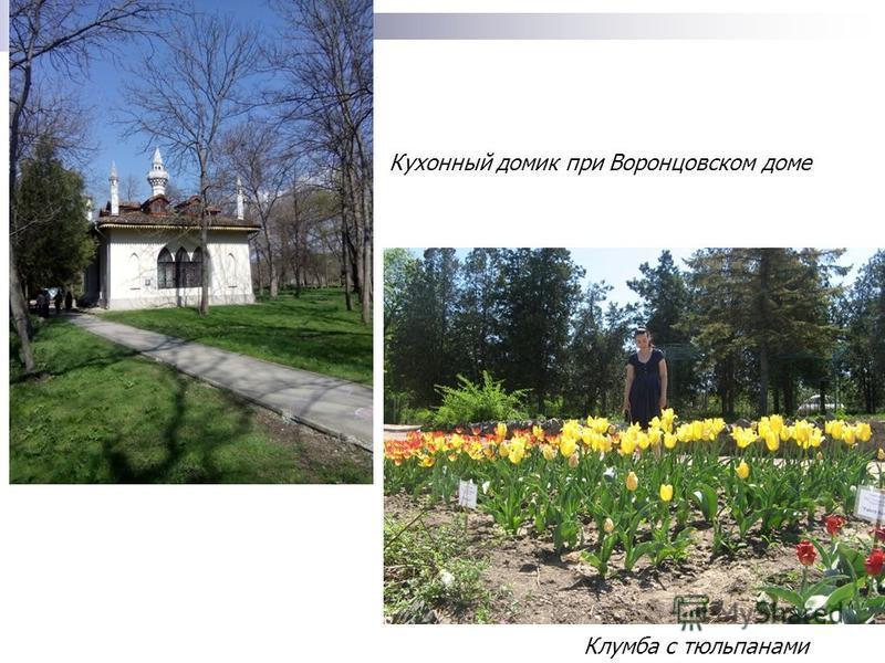 Клумба с тюльпанами Кухонный домик при Воронцовском доме
