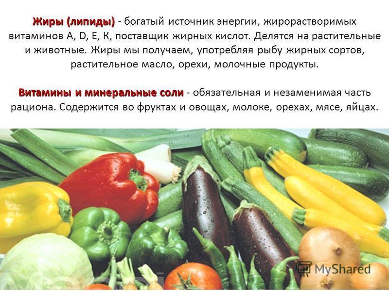 Жиры (липиды) Витамины и минеральные соли Жиры (липиды) - богатый источник энергии, жирорастворимых витаминов А, D, E, К, поставщик жирных кислот. Делятся на растительные и животные. Жиры мы получаем, употребляя рыбу жирных сортов, растительное масло