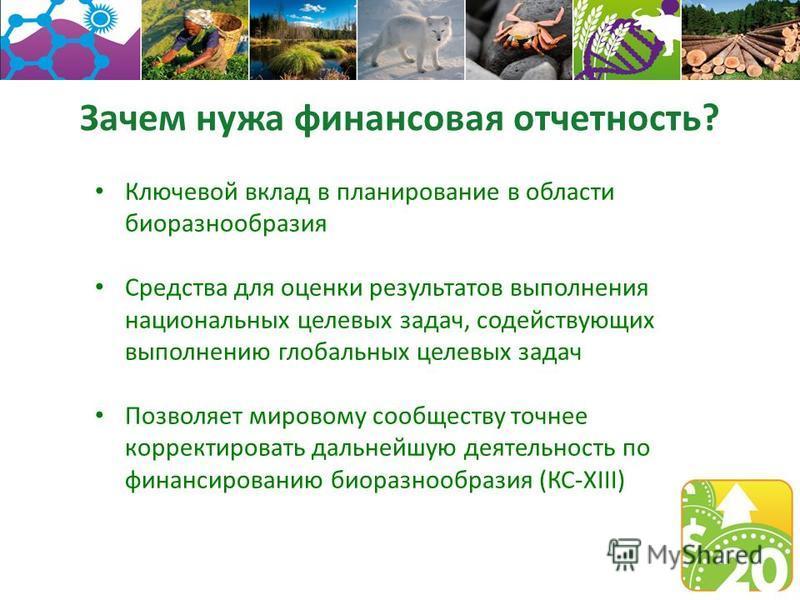 Зачем нужна финансовая отчетность? Ключевой вклад в планирование в области биоразнообразия Средства для оценки результатов выполнения национальных целевых задач, содействующих выполнению глобальных целевых задач Позволяет мировому сообществу точнее к