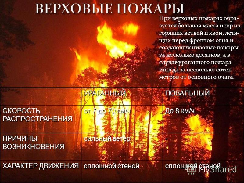 УРАГАННЫЙПОВАЛЬНЫЙ СКОРОСТЬ РАСПРОСТРАНЕНИЯ от 7 до 70 км/ч До 8 км/ч ПРИЧИНЫ ВОЗНИКНОВЕНИЯ сильный ветер - ХАРАКТЕР ДВИЖЕНИЯ сплошной стеной При верховых пожарах образуется большая масса искр из горящих ветвей и хвои, летящих перед фронтом огня и со