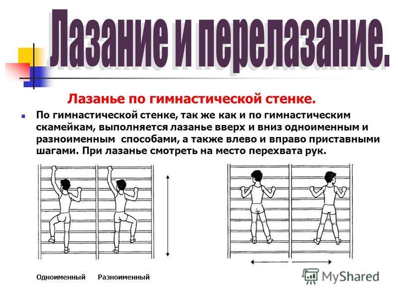 Лазанье по гимнастической стенке. По гимнастической стенке, так же как и по гимнастическим скамейкам, выполняется лазанье вверх и вниз одноименным и разноименным способами, а также влево и вправо приставными шагами. При лазанье смотреть на место пере