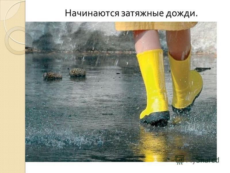 Начинаются затяжные дожди.