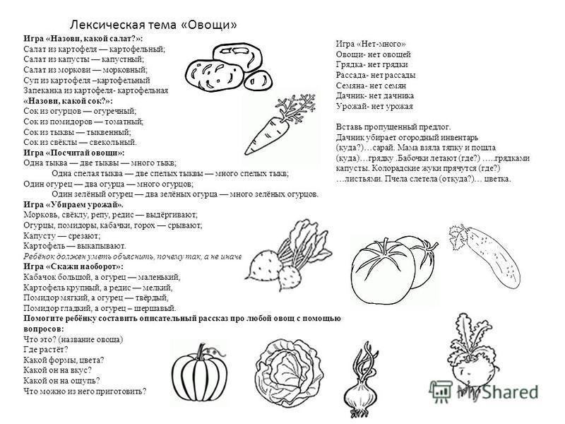 Лексическая тема «Овощи» Игра «Назови, какой салат?»: Салат из картофеля картофельный; Салат из капусты капустный; Салат из моркови морковный; Суп из картофеля –картофельный Запеканка из картофеля- картофельная «Назови, какой сок?»: Сок из огурцов ог