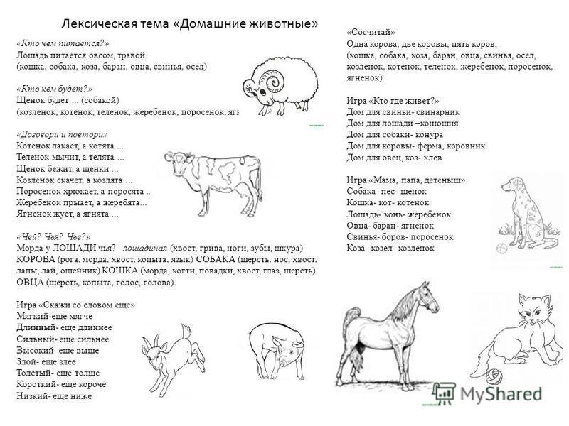 Лексическая тема «Домашние животные» «Кто чем питается?» Лошадь питается овсом, травой. (кошка, собака, коза, баран, овца, свинья, осел) «Кто кем будет?» Щенок будет... (собакой) (козленок, котенок, теленок, жеребенок, поросенок, ягненок) «Договори и