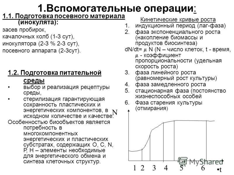 1. Вспомогательные операции: 1.1. Подготовка посевного материала (инокулята): засев пробирок, качалочных колб (1-3 сут), инокулятора (2-3 % 2-3 сут), посевного аппарата (2-3 сут). Кинетические кривые роста 1. индукционный период (лаг-фаза) 2. фаза эк
