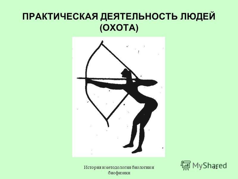 ПРАКТИЧЕСКАЯ ДЕЯТЕЛЬНОСТЬ ЛЮДЕЙ (ОХОТА) 12История и методология биологии и биофизики