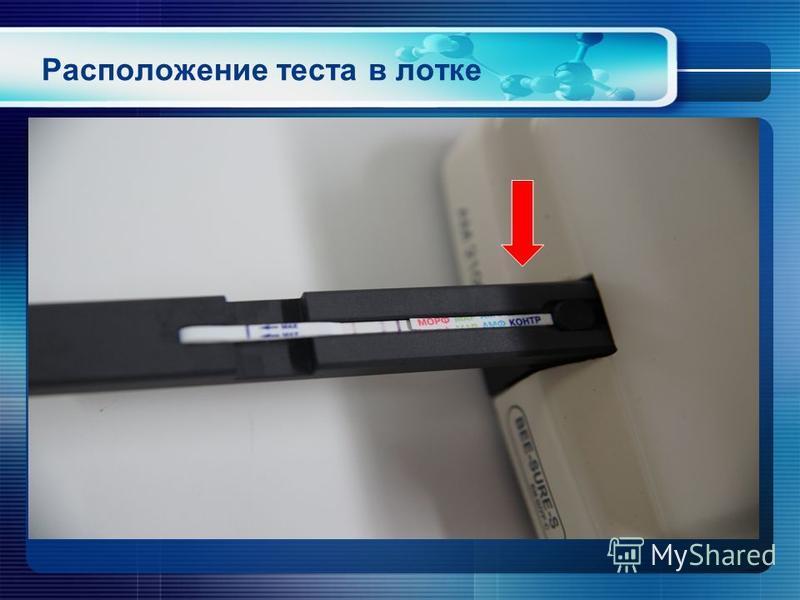 Расположение теста в лотке