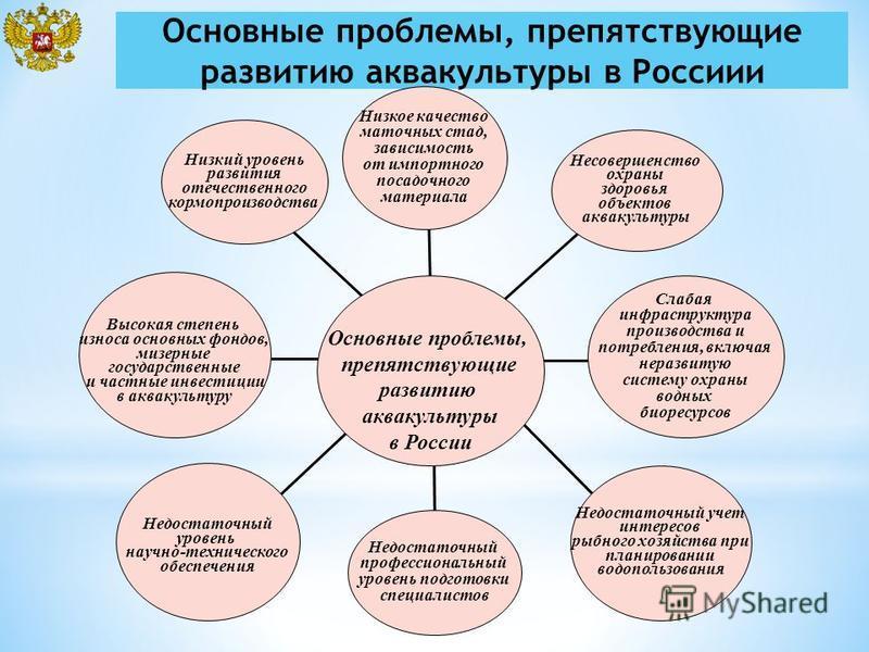Основные проблемы, препятствующие развитию аквакультуры в Россиии Высокая степень износа основных фондов, мизерные государственные и частные инвестиции в аквакультуру Недостаточный уровень научно-технического обеспечения Недостаточный учет интересов