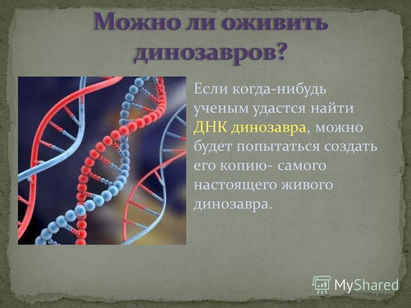 Если когда-нибудь ученым удастся найти ДНК динозавра, можно будет попытаться создать его копию- самого настоящего живого динозавра.