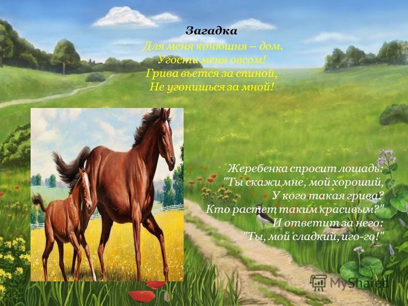 Загадка Для меня конюшня – дом. Угости меня овсом! Грива вьется за спиной, Не угонишься за мной! Жеребенка спросит лошадь: Ты скажи мне, мой хороший, У кого такая грива? Кто растет таким красивым? И ответит за него: Ты, мой сладкий, иго-го!