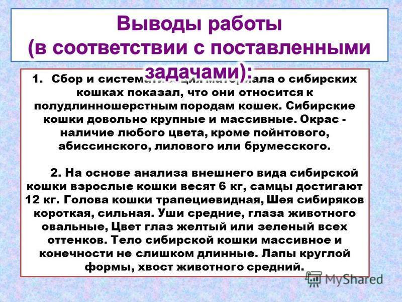 1. Сбор и систематизация материала о сибирских кошках показал, что они относится к полудлинношерстным породам кошек. Сибирские кошки довольно крупные и массивные. Окрас - наличие любого цвета, кроме пойнтового, абиссинского, лилового или брумесского.