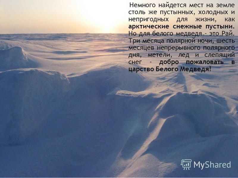 Немного найдется мест на земле столь же пустынных, холодных и непригодных для жизни, как арктические снежные пустыни. Но для белого медведя - это Рай. Три месяца полярной ночи, шесть месяцев непрерывного полярного дня, метели, лед и слепящий снег - д