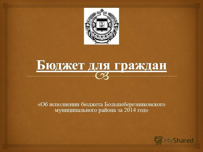 «Об исполнении бюджета Большеберезниковского муниципального района за 2014 год»