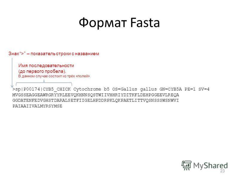Формат Fasta 23 >sp|P00174|CYB5_CHICK Cytochrome b5 OS=Gallus gallus GN=CYB5A PE=1 SV=4 MVGSSEAGGEAWRGRYYRLEEVQKHNNSQSTWIIVHHRIYDITKFLDEHPGGEEVLREQA GGDATENFEDVGHSTDARALSETFIIGELHPDDRPKLQKPAETLITTVQSNSSSWSNWVI PAIAAIIVALMYRSYMSE Знак > – показатель с