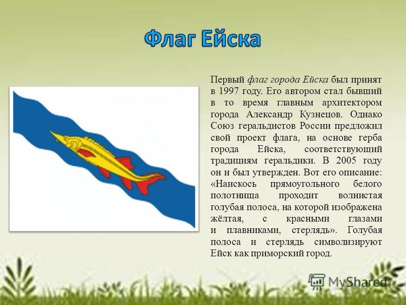 Первый флаг города Ейска был принят в 1997 году. Его автором стал бывший в то время главным архитектором города Александр Кузнецов. Однако Союз геральдистов России предложил свой проект флага, на основе герба города Ейска, соответствующий традициям г
