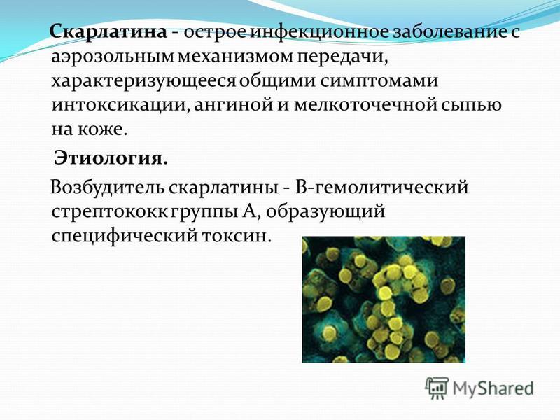 Скарлатина - острое инфекционное заболевание с аэрозольным механизмом передачи, характеризующееся общими симптомами интоксикации, ангиной и мелкоточечной сыпью на коже. Этиология. Возбудитель скарлатины - В-гемолитический стрептококк группы А, образу