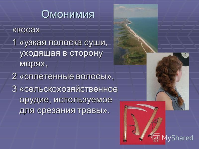 Омонимия «коса» 1 «узкая полоска суши, уходящая в сторону моря», 2 «сплетенные волосы», 3 «сельскохозяйственное орудие, используемое для срезания травы».
