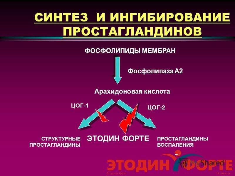 ЦОГ Выявлено два изофермента циклооксигеназы: ЦОГ-1 и ЦОГ-2. ЦОГ-1 отвечает за выработку простагландинов, участвующих в защите слизистой оболочки желудочно-кишечного тракта, регуляции функций тромбоцитов и почечного кровотока. ЦОГ-2 участвует в синте