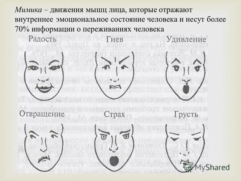 Мимика – движения мышц лица, которые отражают внутреннее эмоциональное состояние человека и несут более 70% информации о переживаниях человека