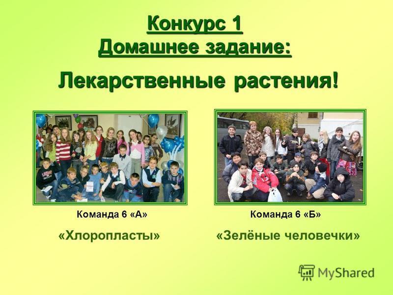 Конкурс 1 Домашнее задание: Лекарственные растения! Команда 6 «А»Команда 6 «Б» «Хлоропласты»«Зелёные человечки»