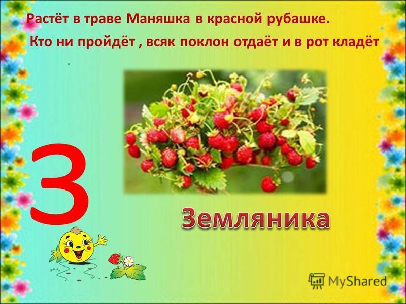 Растёт в траве Маняшка в красной рубашке. Кто ни пройдёт, всяк поклон отдаёт и в рот кладёт. з