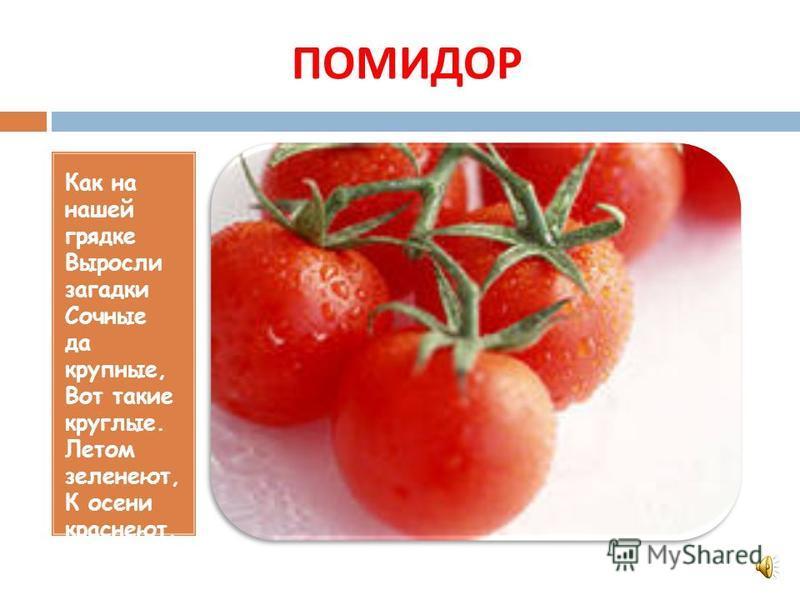 Цель : 1. закрепить названия овощей ; 2. совершенствовать умение вслушиваться в стихотворный текст загадки.